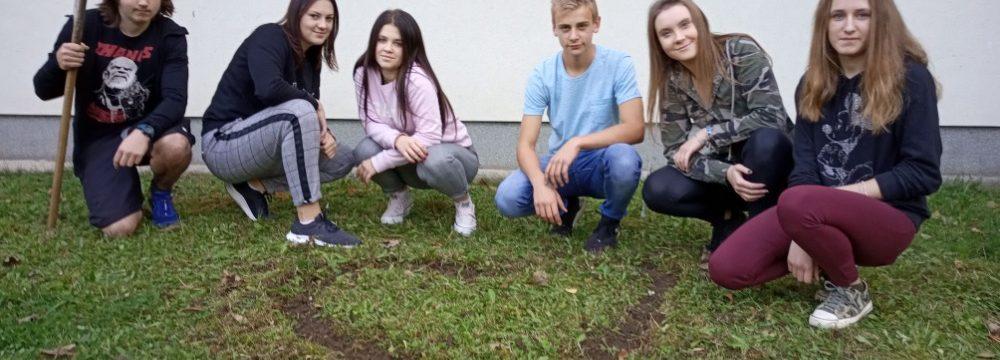 SOU Valašské Klobouky se zapojilo do projektu Krokus