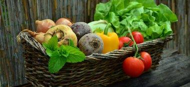 Podpora školního stravování žáků základních škol na rok 2020