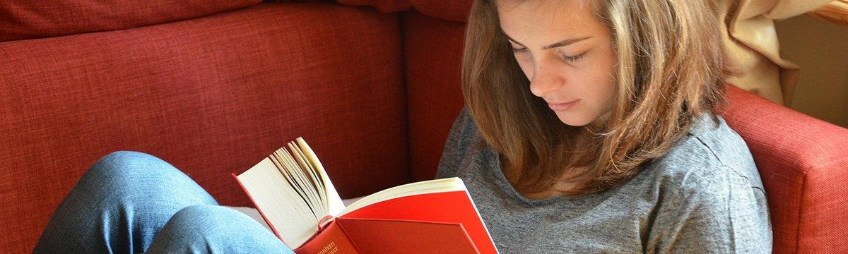 Adolescentní čtenář a nečtenář jako výzva pro učitele