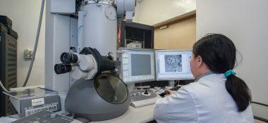 Dny elektronové mikroskopie v Brně