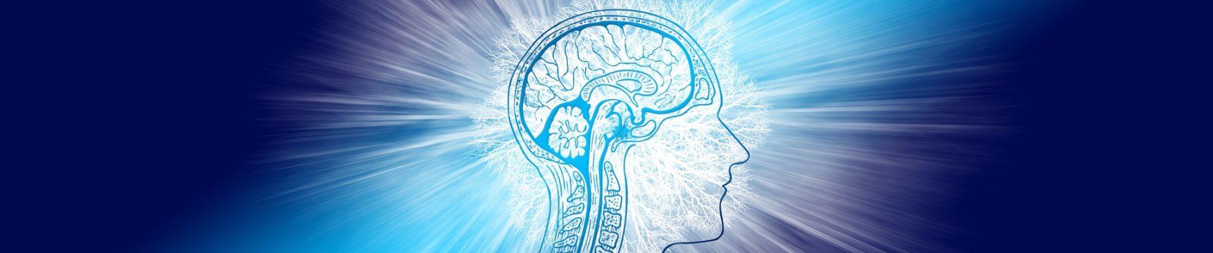Pomozte svým studentům zvýšit vědomosti o epilepsii