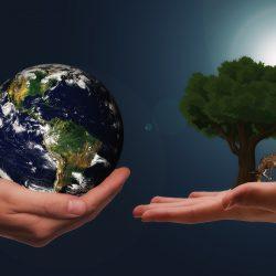 Nominace na XX. ročník Ceny za přínos k rozvoji environmentální výchovy, vzdělávání a osvěty ve Zlínském kraji za rok 2020