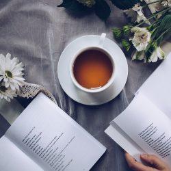 Ladění: tentokrát v souznění literatury faktu a poezie