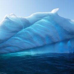 Cartoon Network a Climate Action Project spojily své síly a vyzývají studenty k boji proti změně klimatu